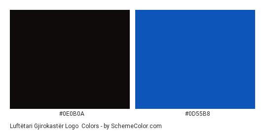 Luftëtari Gjirokastër Logo - Color scheme palette thumbnail - #0e0b0a #0d55b8
