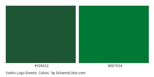 Veritiv Logo Greens - Color scheme palette thumbnail - #1d5632 #007934