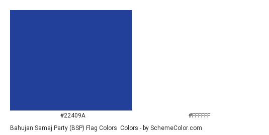 Bahujan Samaj Party (BSP) Flag Colors - Color scheme palette thumbnail - #22409a #ffffff