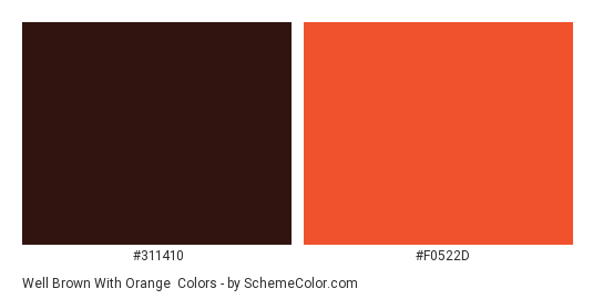 Well Brown With Orange Color Scheme Palette Thumbnail 311410 F0522d