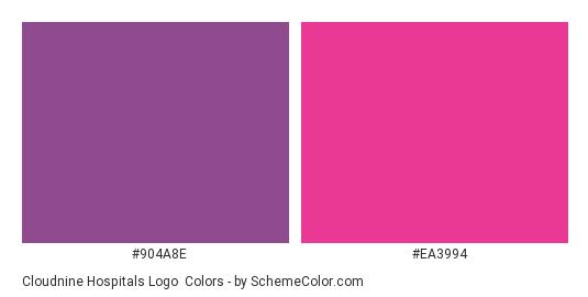 Cloudnine Hospitals Logo - Color scheme palette thumbnail - #904a8e #ea3994