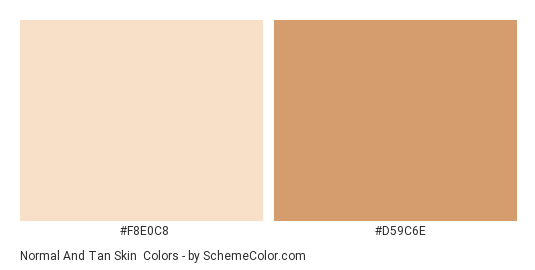 Normal and Tan Skin - Color scheme palette thumbnail - #F8E0C8 #d59c6e