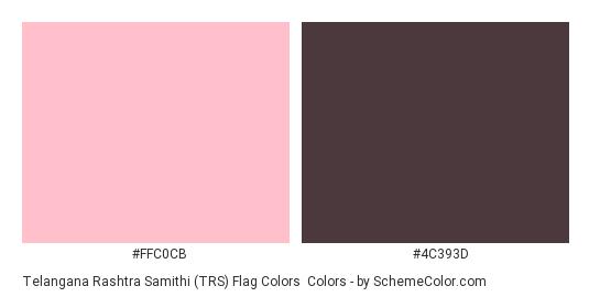 Telangana Rashtra Samithi (TRS) Flag Colors - Color scheme palette thumbnail - #ffc0cb #4c393d