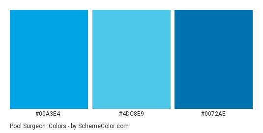 Pool Surgeon - Color scheme palette thumbnail - #00a3e4 #4dc8e9 #0072ae