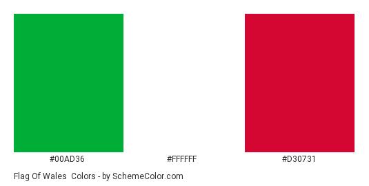 Flag of Wales - Color scheme palette thumbnail - #00ad36 #ffffff #d30731