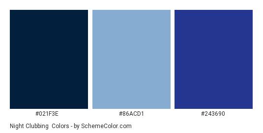 Night Clubbing - Color scheme palette thumbnail - #021f3e #86acd1 #243690