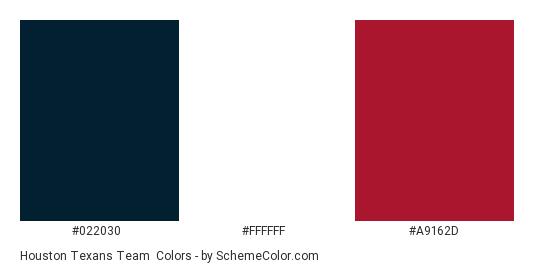 Houston Texans Team - Color scheme palette thumbnail - #022030 #ffffff #a9162d