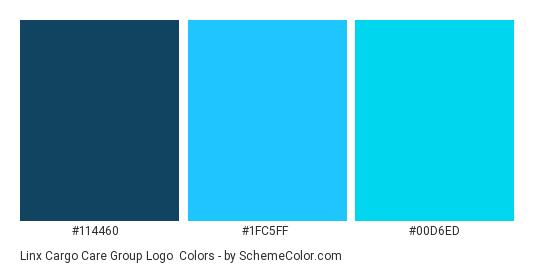 Linx Cargo Care Group Logo - Color scheme palette thumbnail - #114460 #1fc5ff #00d6ed