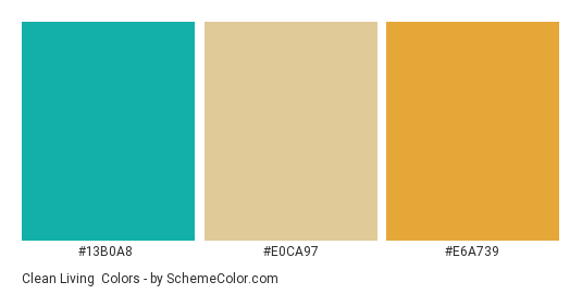 Clean Living - Color scheme palette thumbnail - #13b0a8 #E0CA97 #e6a739