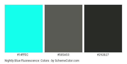 Nightly Blue Fluorescence - Color scheme palette thumbnail - #14FFEC #585A53 #292B27