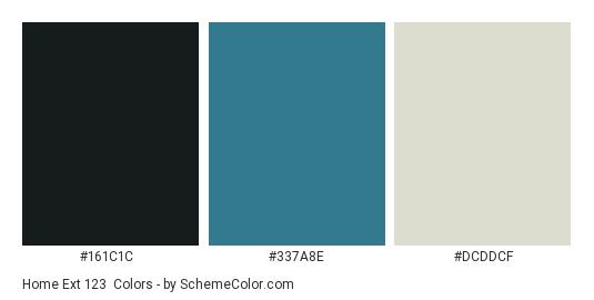 Home Ext 123 - Color scheme palette thumbnail - #161c1c #337a8e #dcddcf