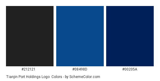 Tianjin Port Holdings Logo - Color scheme palette thumbnail - #212121 #08498d #00205a
