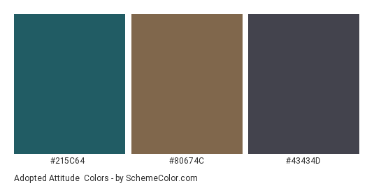 Adopted Attitude - Color scheme palette thumbnail - #215c64 #80674c #43434d