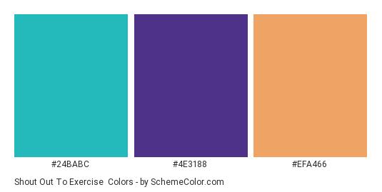 Shout Out to Exercise - Color scheme palette thumbnail - #24babc #4e3188 #efa466