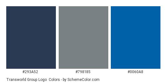 Transworld Group Logo - Color scheme palette thumbnail - #293a52 #798185 #0060a8