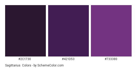 Sagittarius - Color scheme palette thumbnail - #2c1730 #421d53 #733380