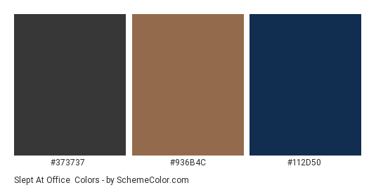 Slept at Office - Color scheme palette thumbnail - #373737 #936b4c #112d50