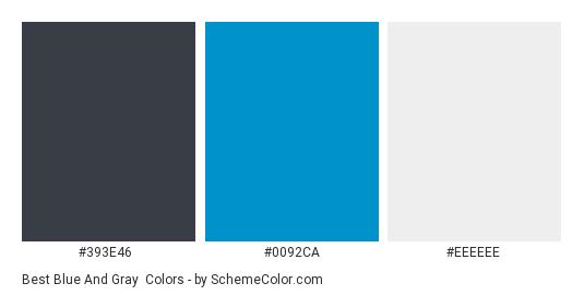 Best Blue and Gray - Color scheme palette thumbnail - #393E46 #0092CA #EEEEEE