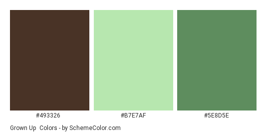 Grown Up - Color scheme palette thumbnail - #493326 #B7E7AF #5E8D5E