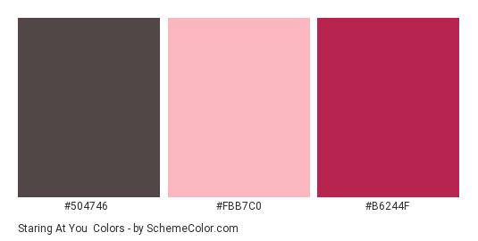 Staring At You - Color scheme palette thumbnail - #504746 #fbb7c0 #b6244f