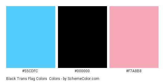 Black Trans Flag Colors - Color scheme palette thumbnail - #55CDFC #000000 #F7A8B8