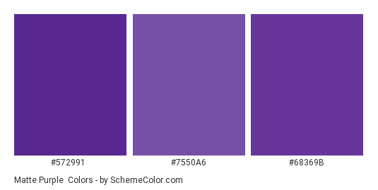 Matte Purple - Color scheme palette thumbnail - #572991 #7550a6 #68369b
