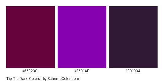 Tip Tip Dark - Color scheme palette thumbnail - #66023C #8601AF #301934