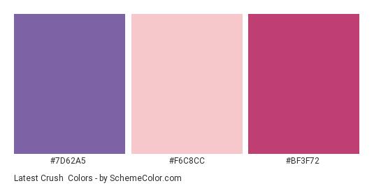 Latest Crush - Color scheme palette thumbnail - #7D62A5 #F6C8CC #BF3F72