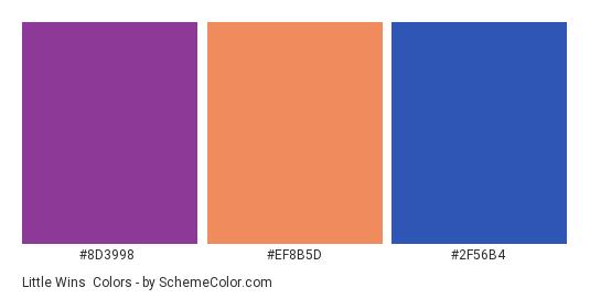 Little Wins - Color scheme palette thumbnail - #8d3998 #ef8b5d #2f56b4