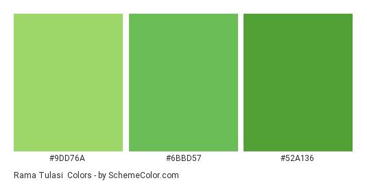 Rama Tulasi - Color scheme palette thumbnail - #9DD76A #6BBD57 #52A136