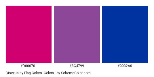 Bisexuality Flag Colors - Color scheme palette thumbnail - #D00070 #8C4799 #0032A0