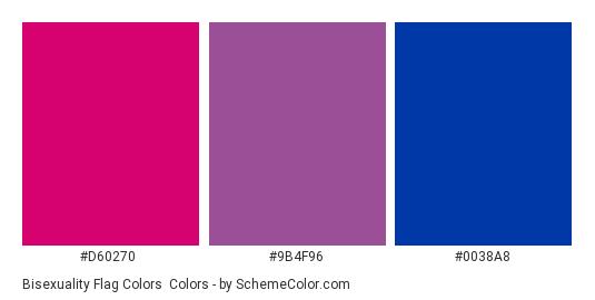 Bisexuality Flag Colors - Color scheme palette thumbnail - #D60270 #9B4F96 #0038A8
