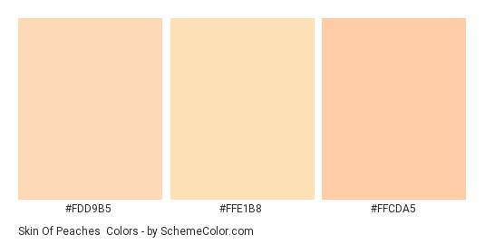 Skin of Peaches - Color scheme palette thumbnail - #FDD9B5 #FFE1B8 #FFCDA5