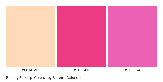 Peachy Pink Lip - Color scheme palette thumbnail - #FFDAB9 #EC3B83 #EC60B4
