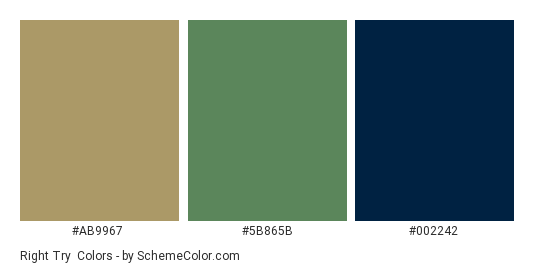 Right Try - Color scheme palette thumbnail - #ab9967 #5b865b #002242