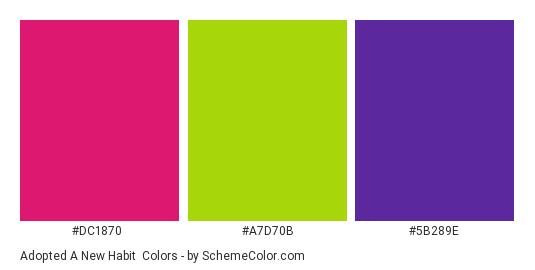 Adopted a New Habit - Color scheme palette thumbnail - #dc1870 #a7d70b #5b289e