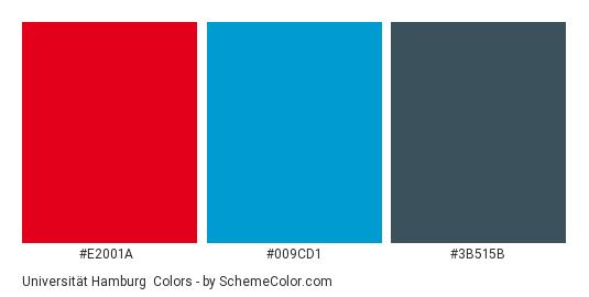 Universität Hamburg - Color scheme palette thumbnail - #e2001a #009cd1 #3b515b