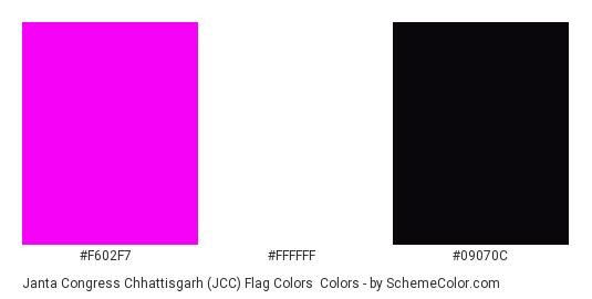 Janta Congress Chhattisgarh (JCC) Flag Colors - Color scheme palette thumbnail - #f602f7 #ffffff #09070c