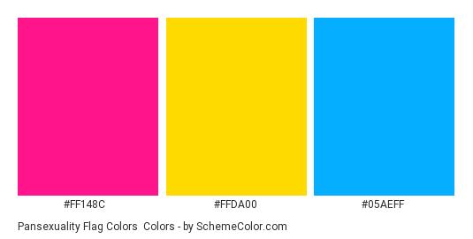 Pansexuality Flag Colors - Color scheme palette thumbnail - #ff148c #ffda00 #05aeff