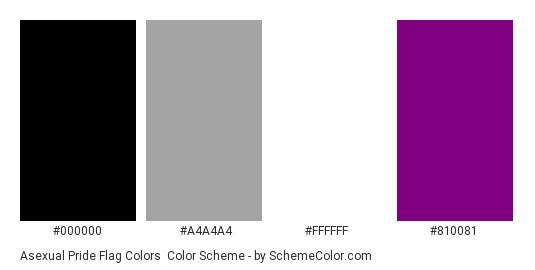 Asexual Pride Flag Colors - Color scheme palette thumbnail - #000000 #A4A4A4 #FFFFFF #810081