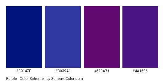 Purple & Dark Blue - Color scheme palette thumbnail - #00147E #3039A1 #620A71 #4A1686