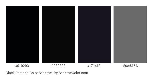 Black Panther - Color scheme palette thumbnail - #010203 #080808 #17141E #6A6A6A