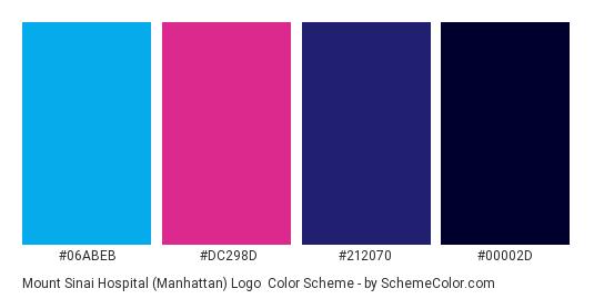 Mount Sinai Hospital (Manhattan) Logo - Color scheme palette thumbnail - #06abeb #dc298d #212070 #00002d