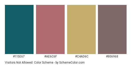 Visitors Not Allowed - Color scheme palette thumbnail - #115e67 #ae6c6f #c4ad6c #806968