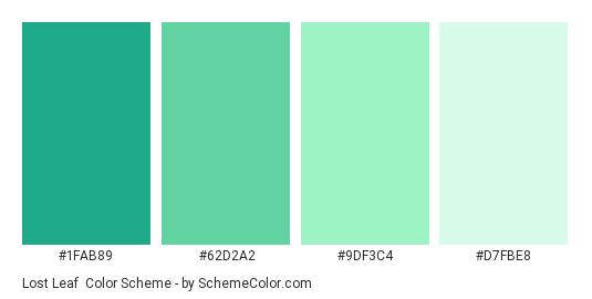 Lost Leaf Color Scheme Palette Thumbnail 1fab89 62d2a2 9df3c4 D7fbe8
