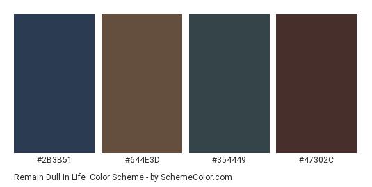 Remain Dull in Life - Color scheme palette thumbnail - #2b3b51 #644e3d #354449 #47302c