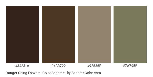 Danger Going Forward - Color scheme palette thumbnail - #34231A #4C3722 #92836F #7A795B