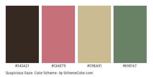 Suspicious Gaze - Color scheme palette thumbnail - #342A21 #C66E79 #C9BA91 #698167