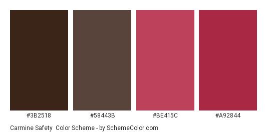 Carmine Safety - Color scheme palette thumbnail - #3b2518 #58443b #be415c #a92844