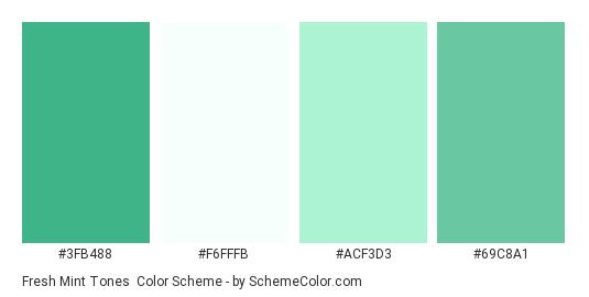 Fresh Mint Tones Color Scheme Aqua Schemecolor Com